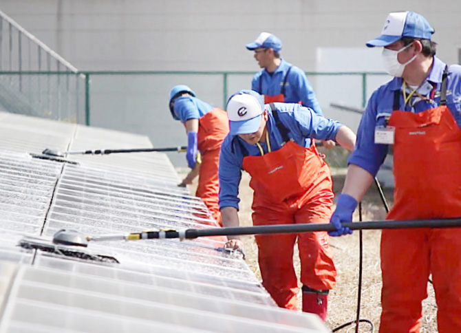 太陽光モジュール洗浄の画像